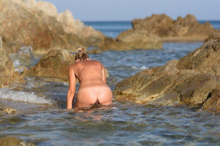 Buena almeja de mar
